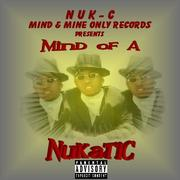 Mind Of A Nukatic CD Project (Front Cover)