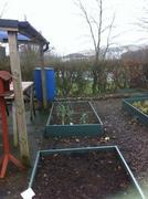 Cloughmills Sat 16th Feb 2013 503