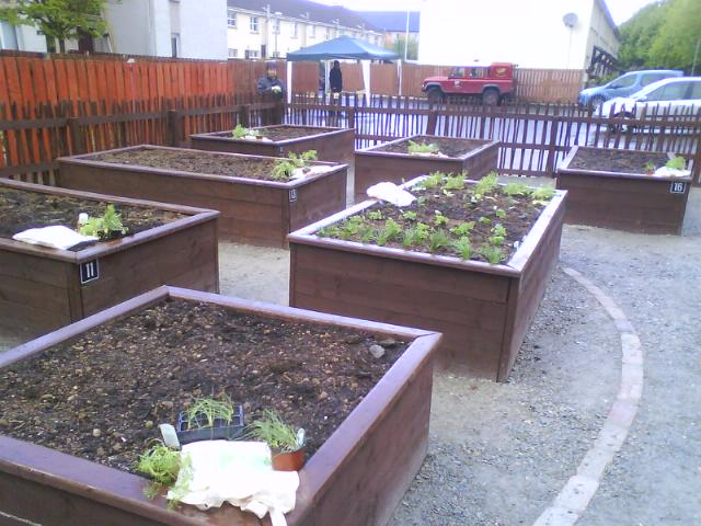 The Raised beds, built for the community, in the fountain.