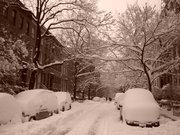nevada casi de 8 pulgadas