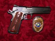 Gun Collection 041