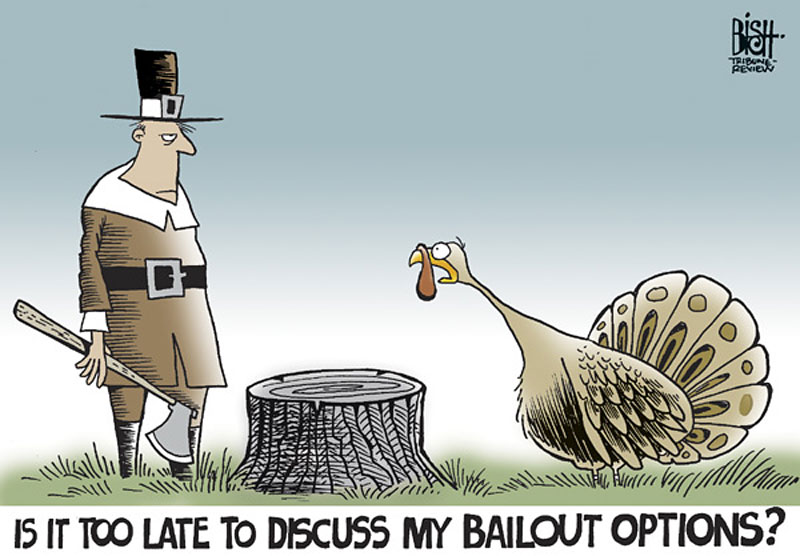 101114_turkey_bail_comic