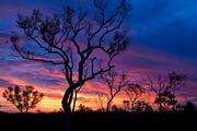 Eco-Hill-Sunset-copy