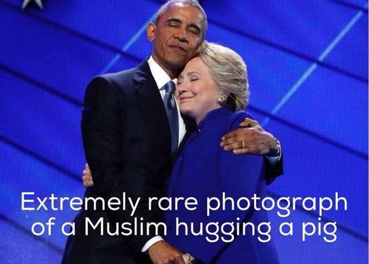 Muslim hugging a pig