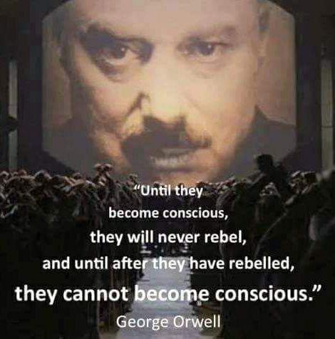 conscious rebellion