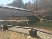 Covered Bridge pool