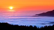 Sea of Fog[1]