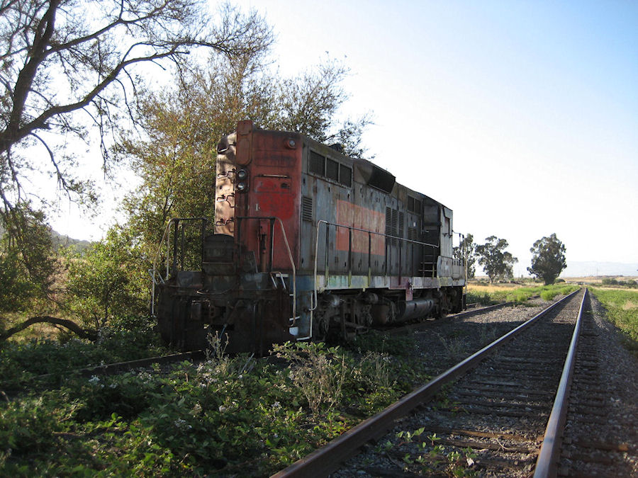 The 3804 at Burdell. June 25th