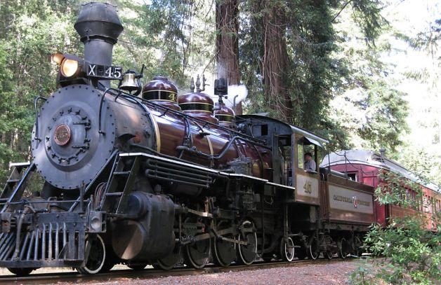 #45 Skunk Train