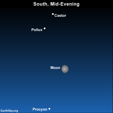 2015-february-28-castor-pollux-procyon-night-sky-chart