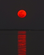 Super_Moon_Rising_Edit (1)