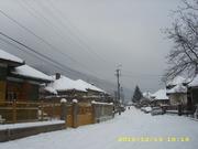 iarna 2012