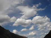 Живые облака