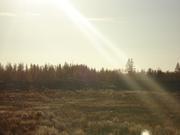 Пронизывающие лучи солнца