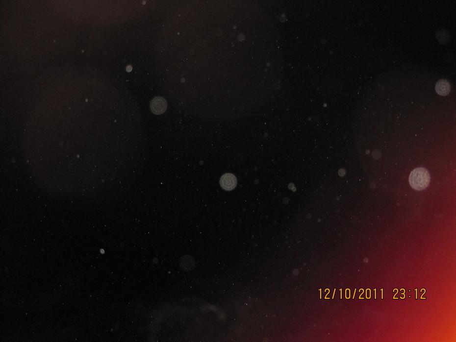 МОЙ ФОТОАППАРАТ  12.10.2011  23-23 056