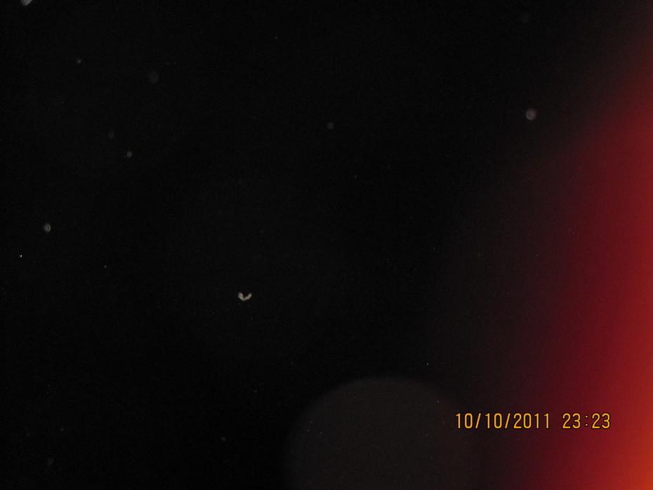 МОЙ ФОТОАППАРАТ  10.10.2011  23-23 564