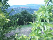 Frana a Montecalvo Irpino, c.da Mauriello ( Tressanti ).