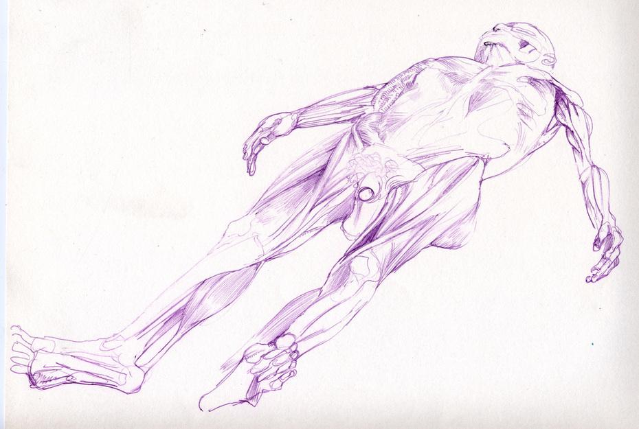 Purple Cadaver