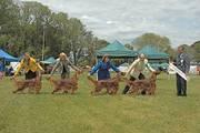 Pendoric Girls in Breeders Team event
