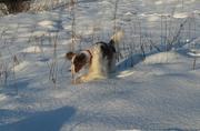 snow in Jan 10