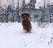 snow girl february 2010