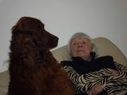 Darwin having a serious talk with Annie