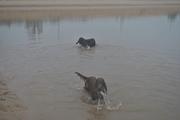 Quick swim in the lagoon