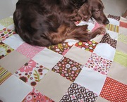 This patchwork seem's nice to lay down a bit