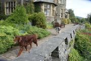 Lake District, Cumbria Aug 2012