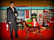 RULA BRAGA INTERNATIONAL DOG SHOW 2012