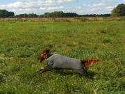 Emma enjoys a new jumper :)