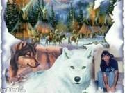 White Wolf & My Son