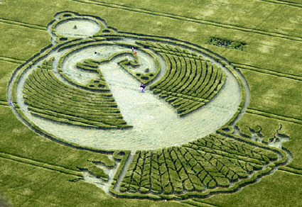 A new start . More awsome crop circle pics and research BLTResearch.com
