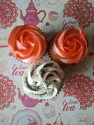 combi cupcake mini