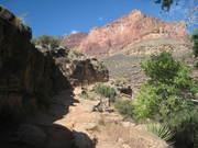 Grand Canyon, 2011 435