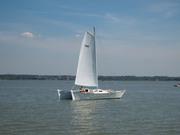 Aotea sailing 1