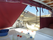 the new Bimini I