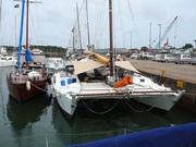 tiki 46 sailing