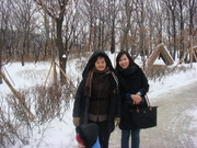 Snowy day in Korea.
