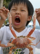 Crab is my favourite.