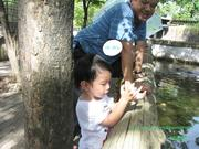Family had happiness at crocodile farm on weekend