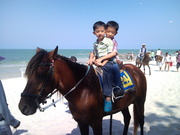 Riding horse at Hua Hin beach.