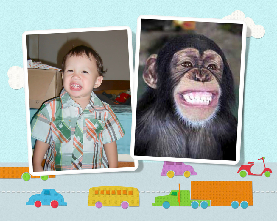Smiling chimp?