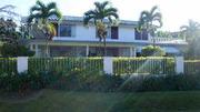 mandeville, jamaica