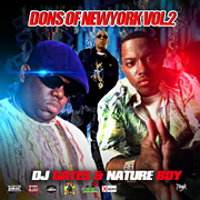 Dons Of New York Vol 2