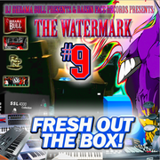DJ BHRAMA BULL PRESENTS_ THE WATERMARK 9 - FRESH OUT THE BOX