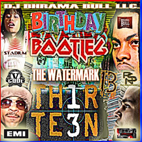 DJ BHRAMA BULL PRESENT_ the Watermark 13 _ birthday bootleg edition