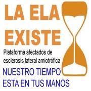 LA ELA EX_ 5 X 5