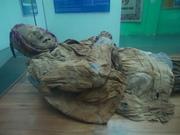 MOMIA DE GUANO