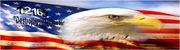 12160 Eagle Eye Flag